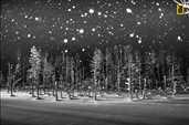 Mansiyon ödülü. Rucca Y Ito, Japonya. Yapay gölet üzerine kar yağıyor.