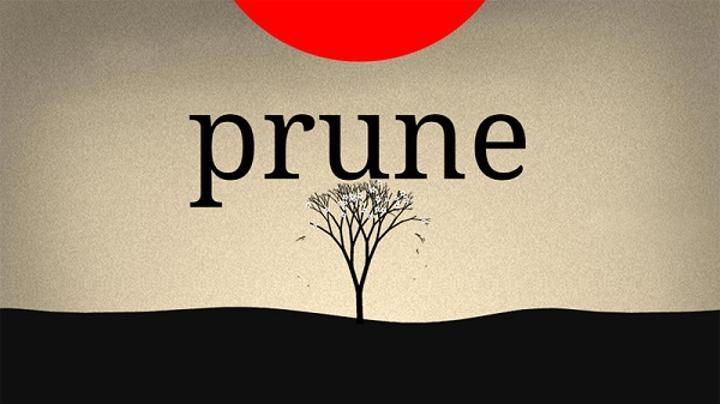 Bulmaca oyunu Prune'un çıkış tarihi belli oldu
