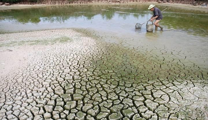 İklim değişikliğinin %10'undan Çin sorumlu