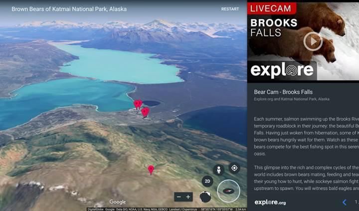 Google Earth artık doğadan canlı yayın yapacak