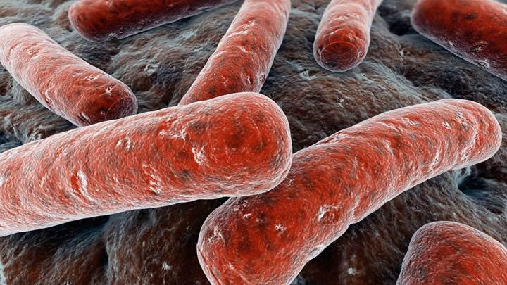Antibiyotik tedavisini tamamlamak zararlı olabilir