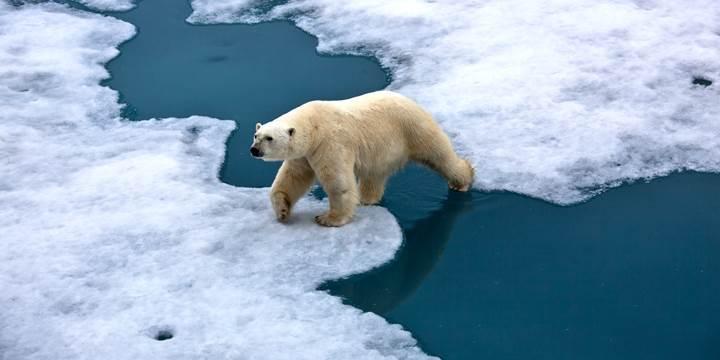 Ülkemizde 2030 yılında 1 milyar ton karbon salınımı gerçekleşecek