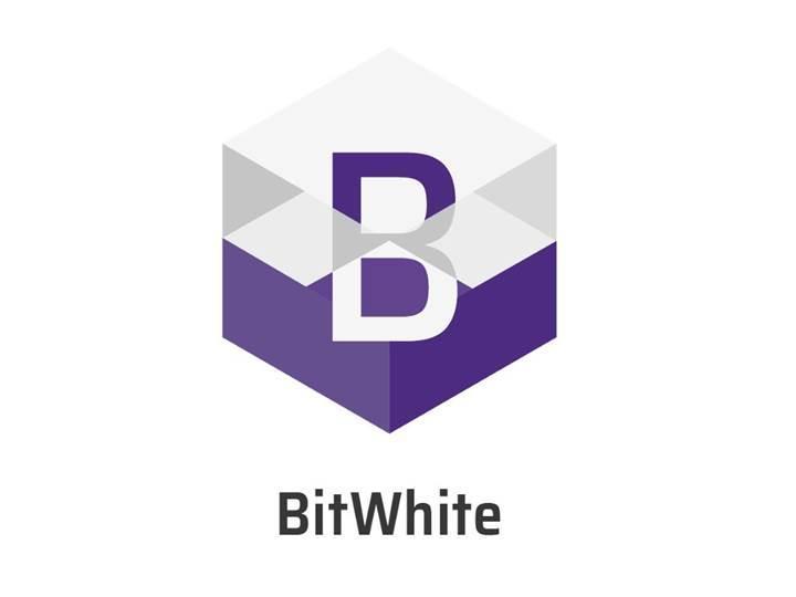 ABD hisse senetleri ilk kez Bir kripto para birimi(BitWhite) İle satın alındı