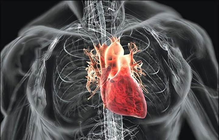 Roket teknolojisiyle yapay kalp üretildi