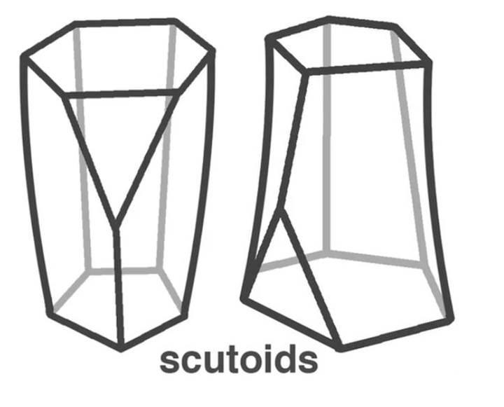 Yeni geometrik şekille tanışın: Scutoid