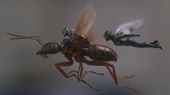 Ant-Man and The Wasp, gişede 500 milyon doları geride bıraktı
