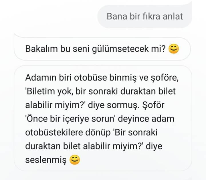 Türkçe Google Asistan ile neler yapılabilecek?