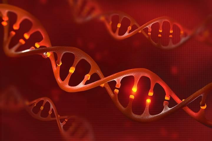 Yeni bulunan CRISPR tekniği ile genler kesilip değiştirilmeden obezite engellenebilir