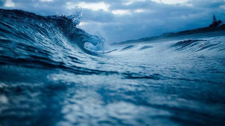 Bilim insanları okyanustaki yağları yiyen bakteri keşfetti