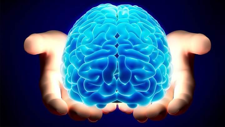 Beyin ile vücut arasındaki nöronal bağlantı aydınlatılıyor
