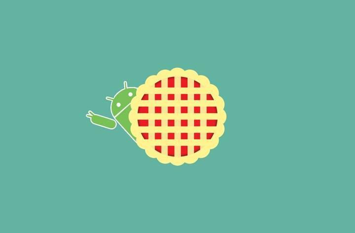 Galaxy Tab Active 2, Android Pie güncellemesi aldı