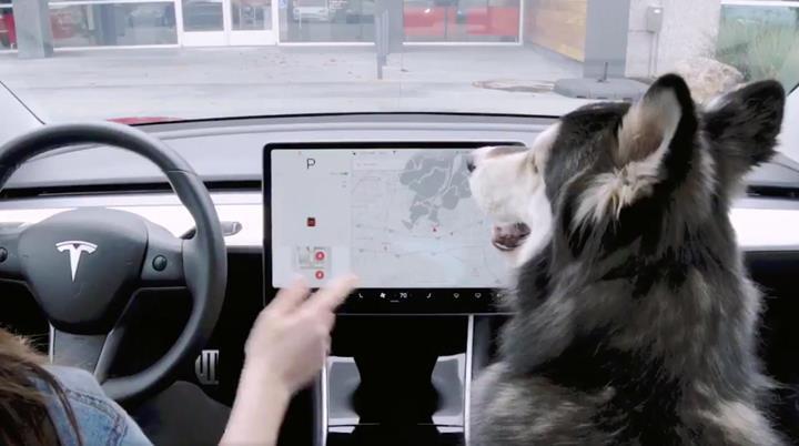Tesla, köpek modundaki önemli bir hatayı düzeltti