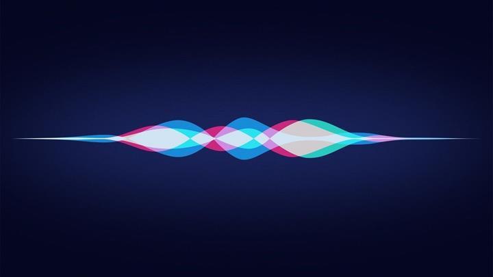 Siri değerlendirme programı durduruldu