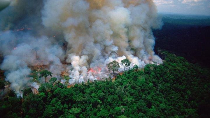 Amazon yangınları, solunum problemlerine yol açmaya başladı