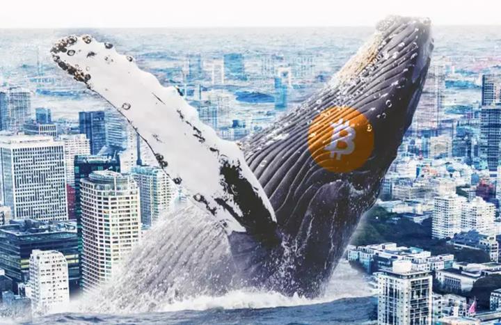 Kripto para piyasası çöküşte