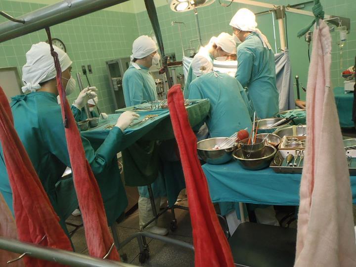 Yılbaşından bu yana 7 bin 263 organ ve doku nakli yapıldı
