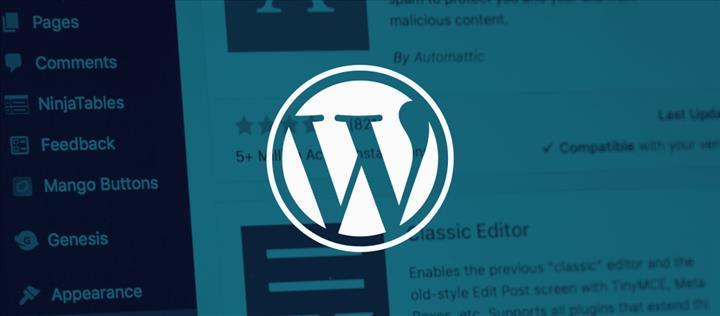 WordPress web siteleri yeni bir gelir kapısına sahip oldu