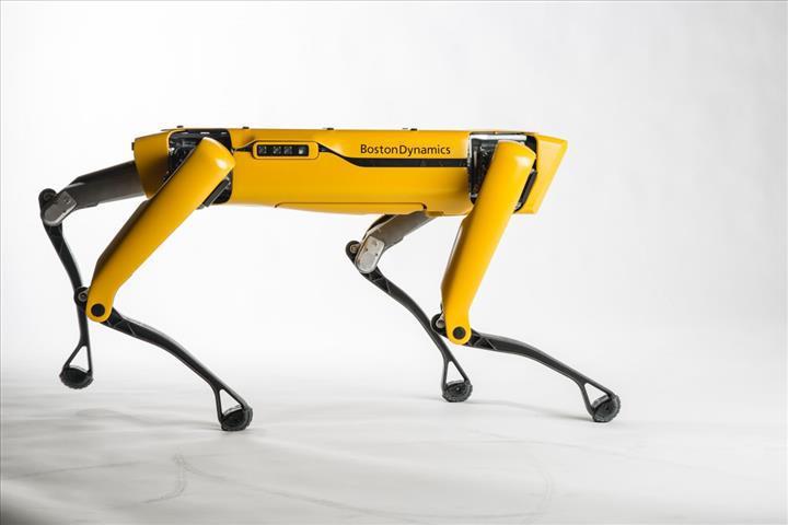Boston Dynamics'in robot köpeği, bomba imha timi tarafından kullanılıyor