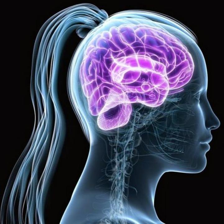 Araştırmacılar, beyindeki bilinmeyenleri çözebilmek için yeni yöntem geliştirdiler