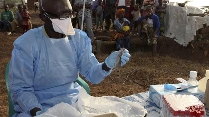 Nijerya'da Lassa virüsü yayılıyor