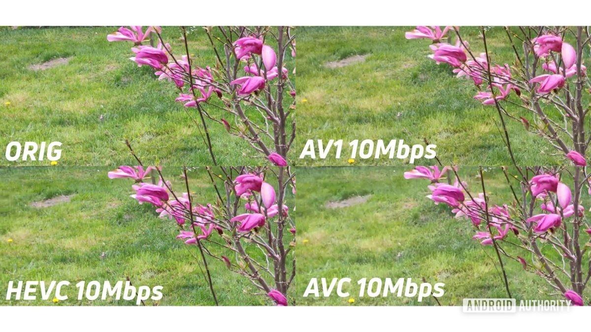 AV1 kodeği nedir? Ne kadar verimli?